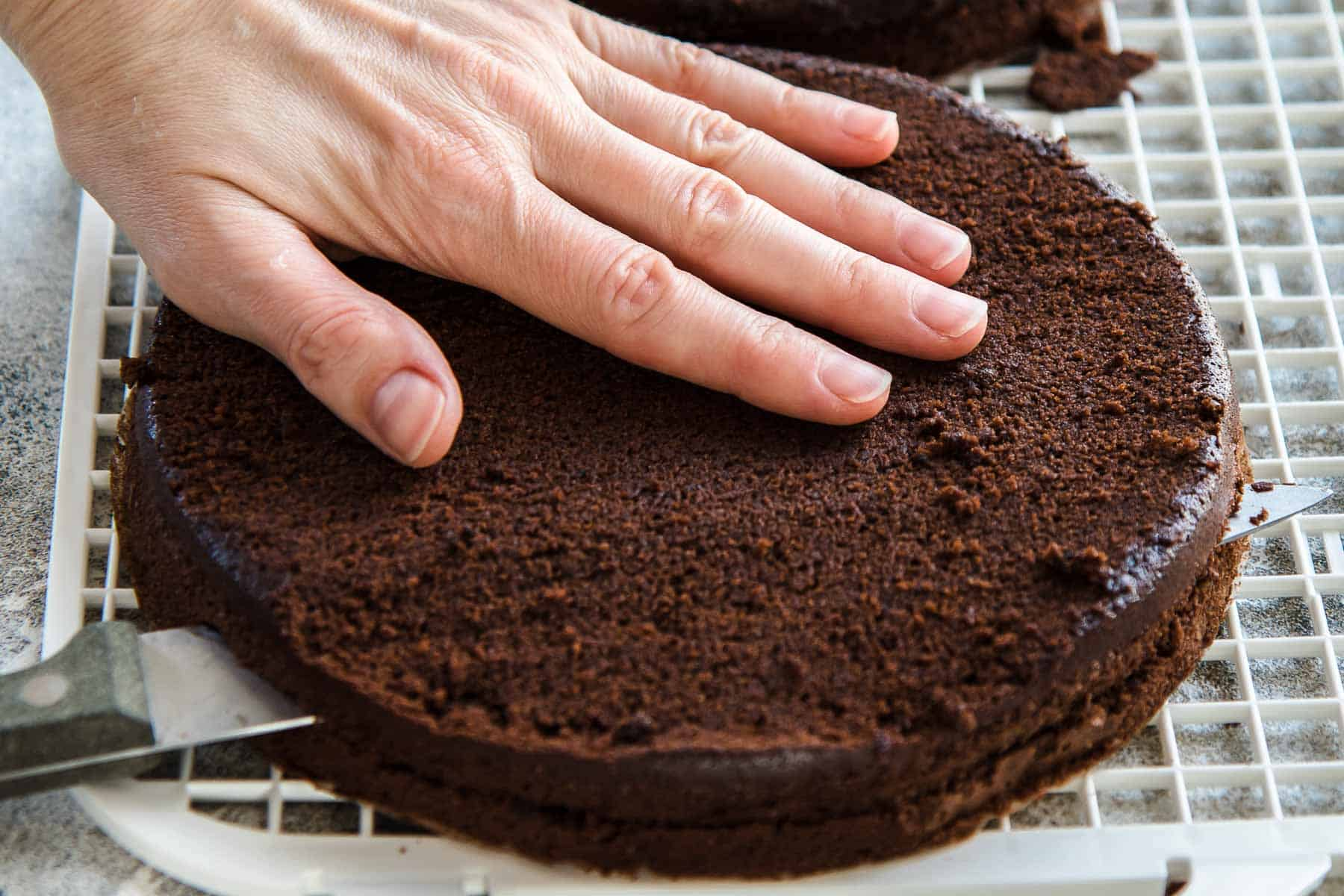 Cutting the chocolate cake layers in half horizontally