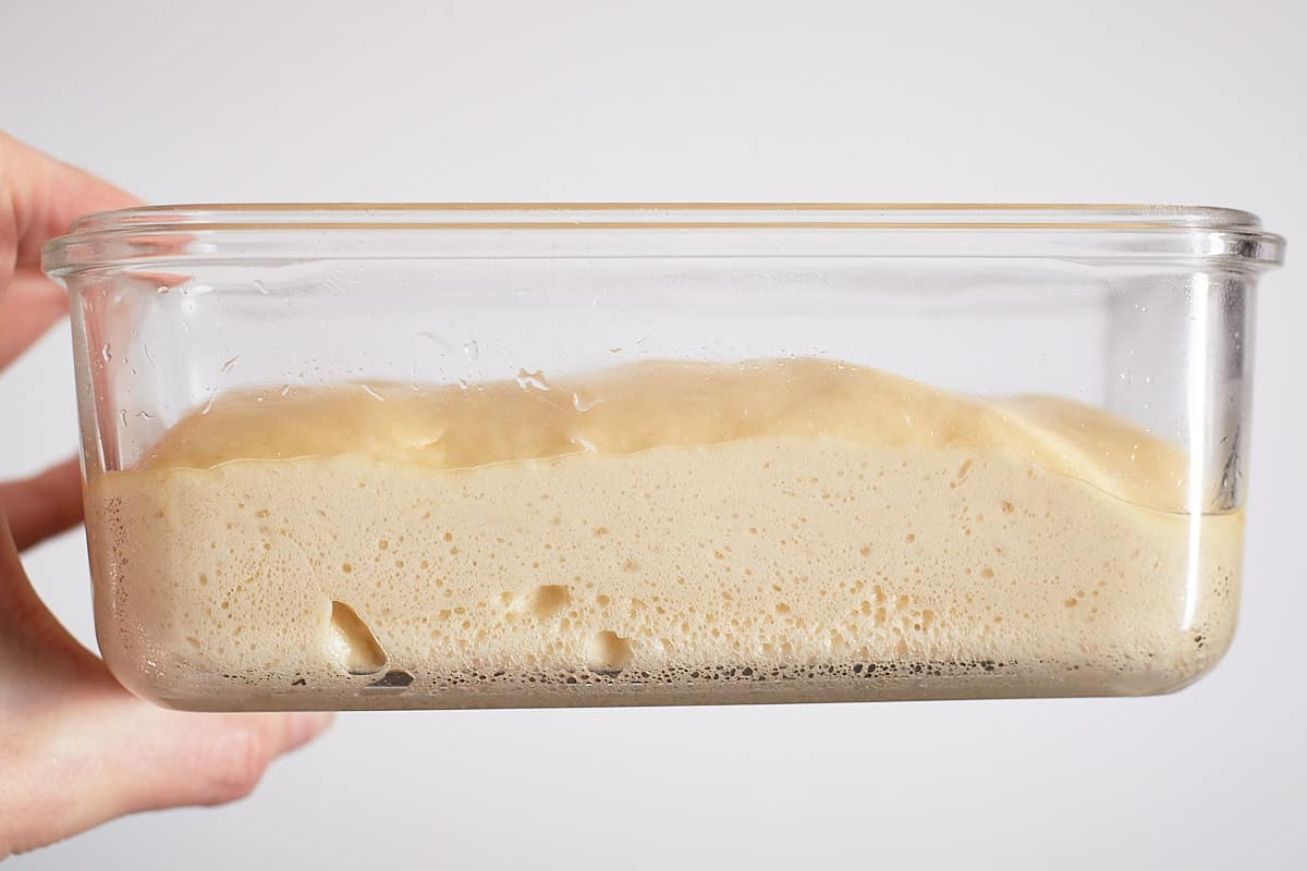 Proofed dough in a glass container