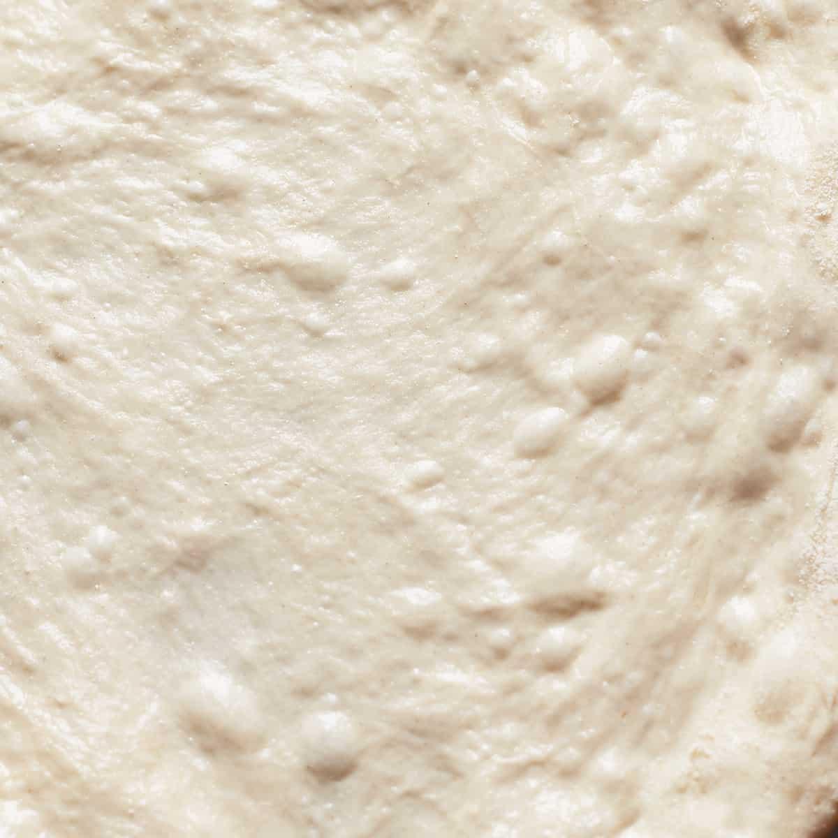 Close up of raw pizza dough