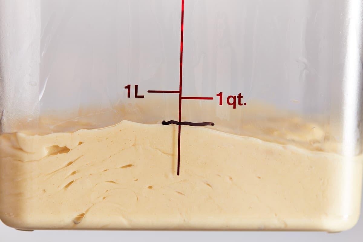Brioche dough in a container