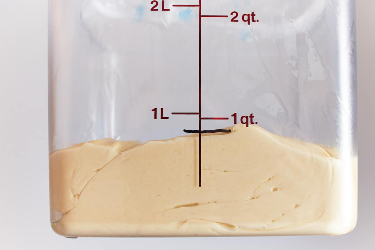 Kneaded dough in a straight sided vessel