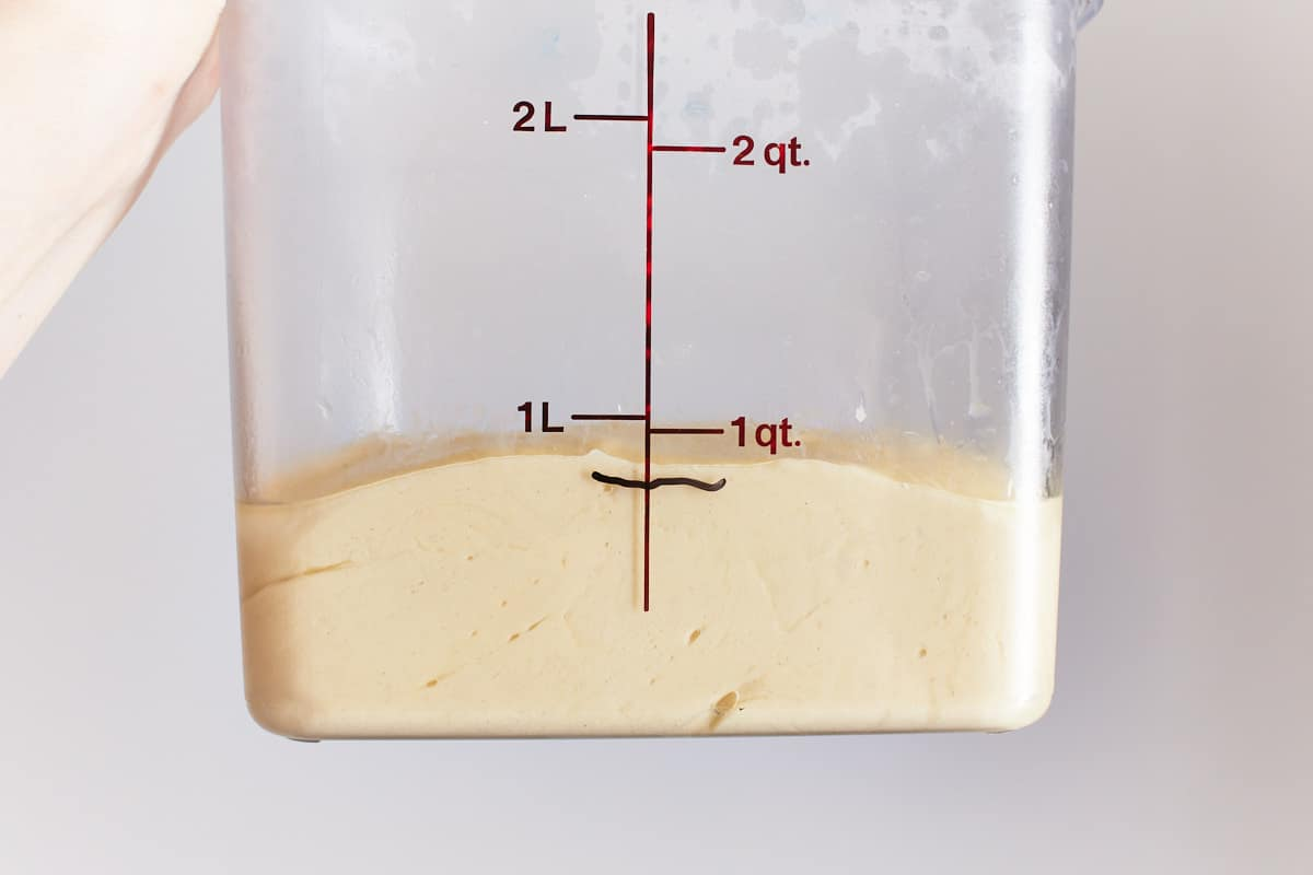 Rising dough in a container